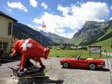 Swiss 2014 15.JPG